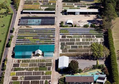 Overland Nurseries - Wholesale Plant Nursery - Aerial View